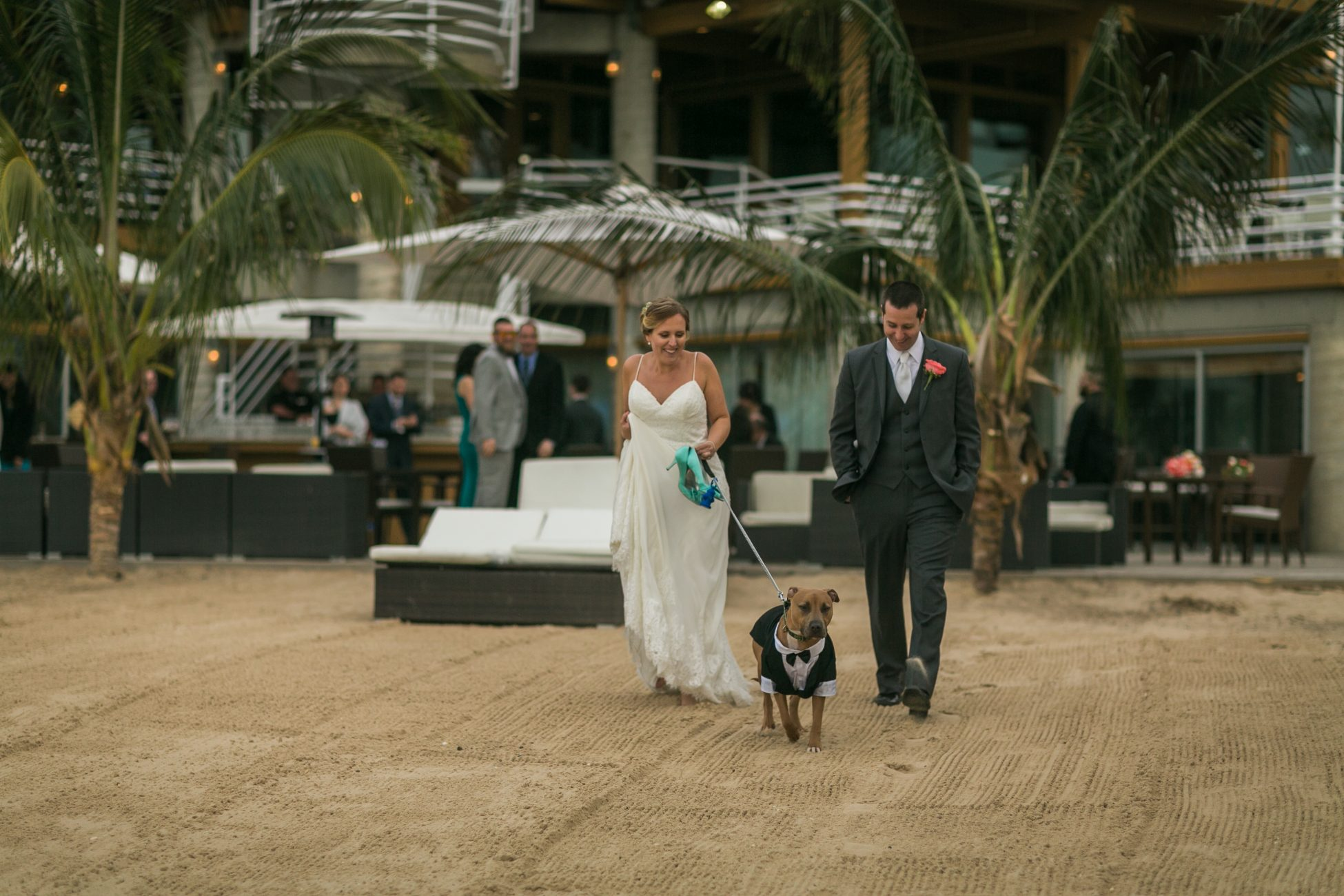 Pet in Your Wedding